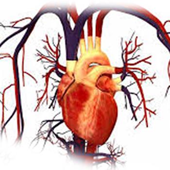 دوره غیرحضوری آموزش بیماران مبتلا به نارسایی قلبی