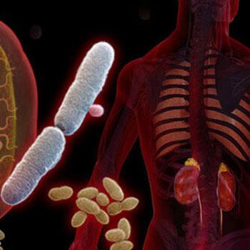 عفونتهای مجاری ادراری